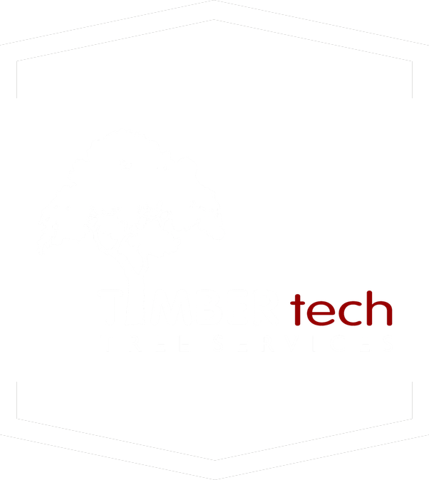Testimonials Timber Tech Tree Services